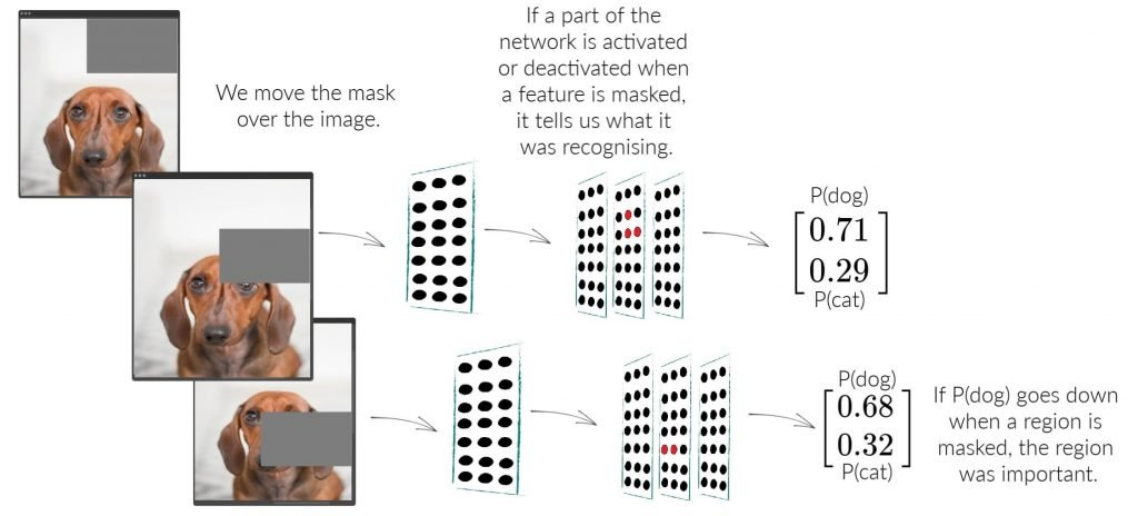 Convolutional neural network explainability by masking parts of a dog image